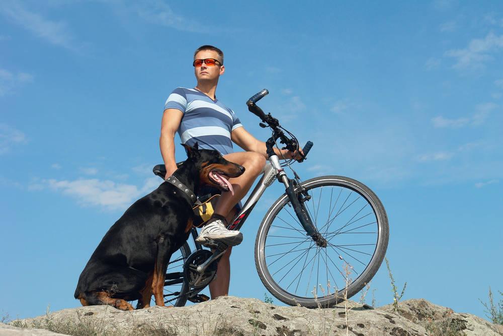 Ciclismo con Teo, mi perro