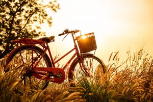 Cuando la bicicleta se convierte en una obra de arte